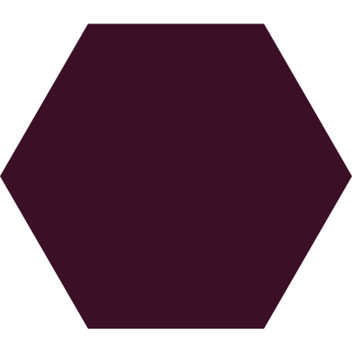 style hexagon brown images in PNG and SVG | Icons8 Illustrations
