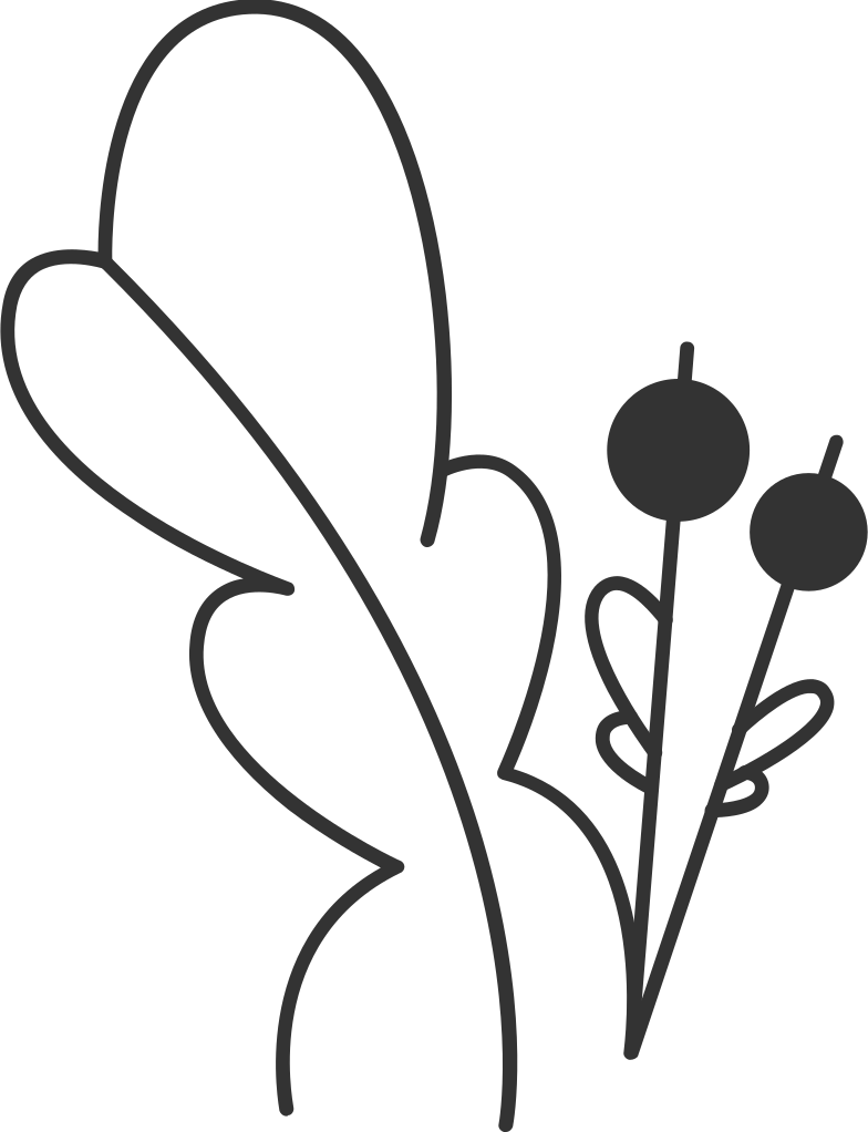 leaf with berries Clipart illustration in PNG, SVG