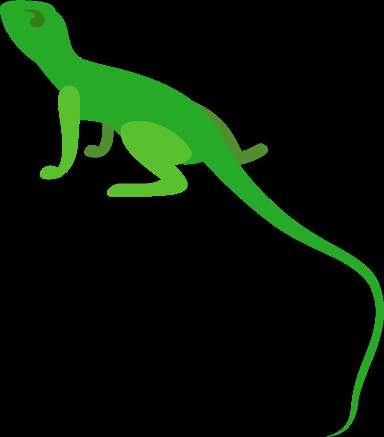 lizard Clipart illustration in PNG, SVG