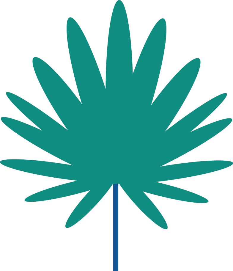 palm tree branch Clipart illustration in PNG, SVG