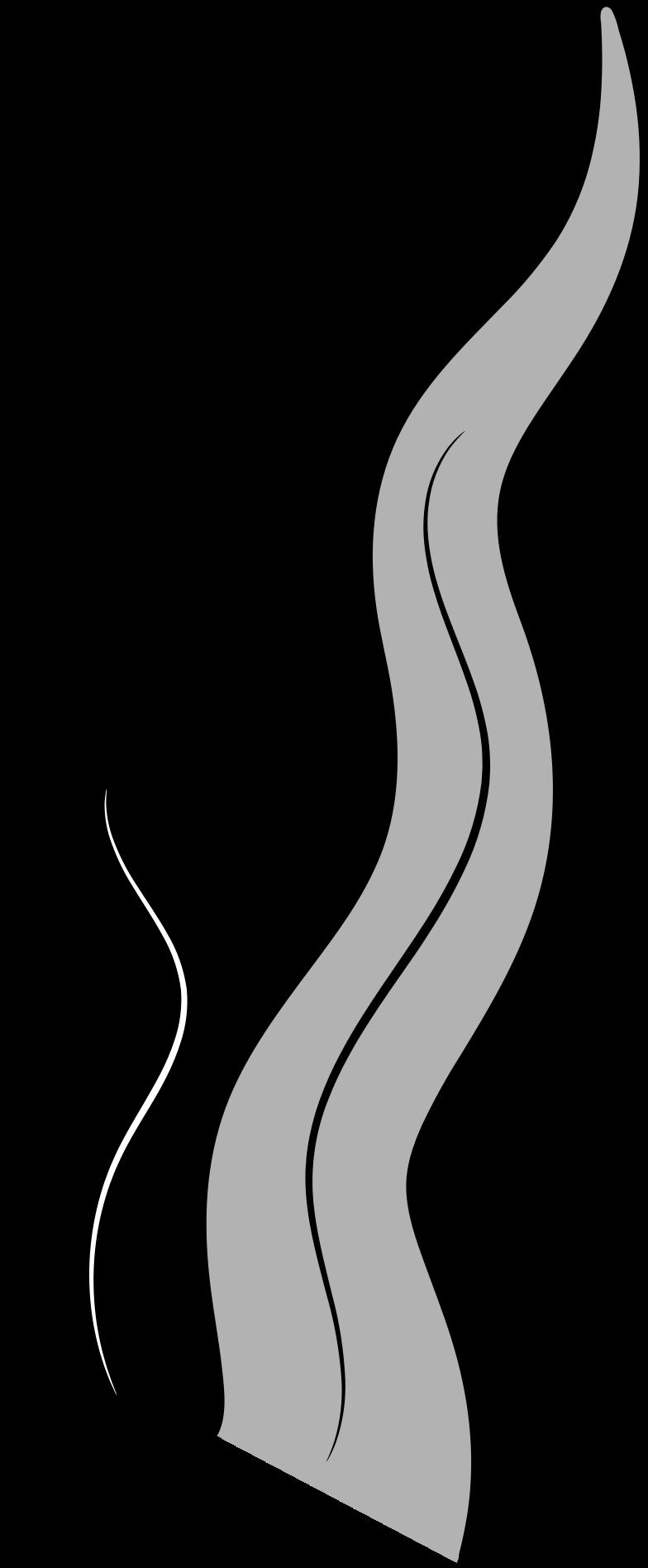 water plant Illustrazione clipart in PNG, SVG