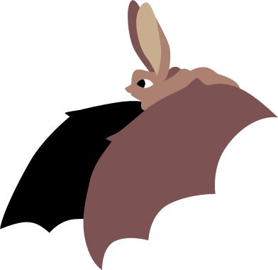 style bat images in PNG and SVG   Icons8 Illustrations