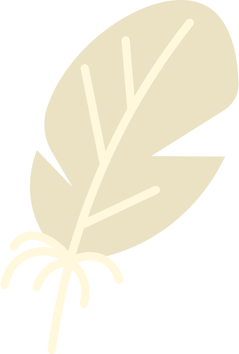 feather Clipart illustration in PNG, SVG