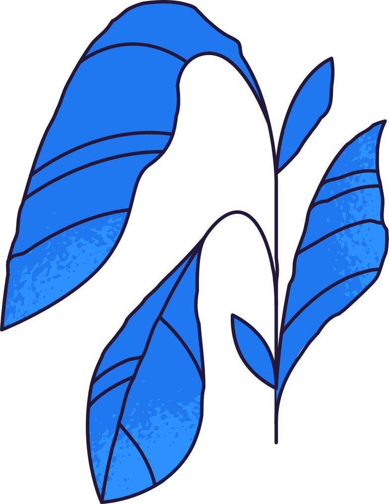 growth  plant Clipart illustration in PNG, SVG