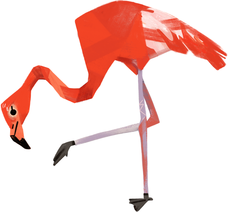 flamingos Clipart illustration in PNG, SVG