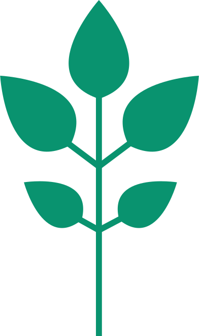 style plant images in PNG and SVG | Icons8 Illustrations
