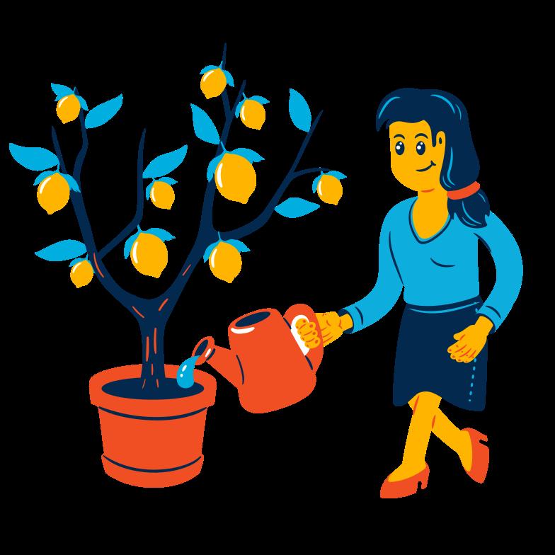 Lemon tree Clipart illustration in PNG, SVG
