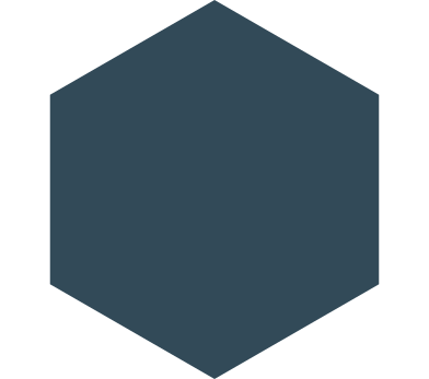 style hexagon dark blue images in PNG and SVG   Icons8 Illustrations
