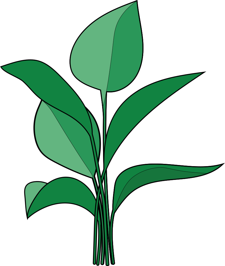 home plant Clipart illustration in PNG, SVG
