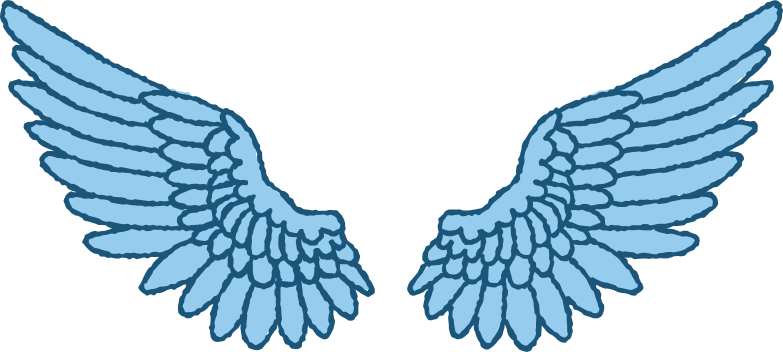 wings Clipart illustration in PNG, SVG