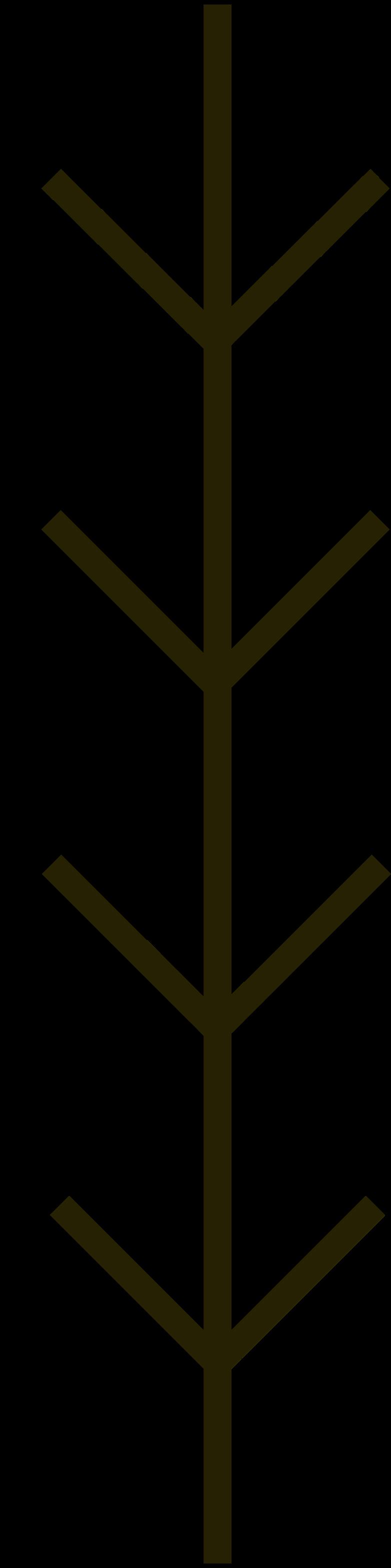 branch Clipart illustration in PNG, SVG