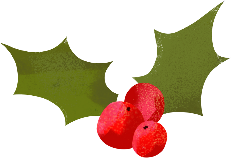 style christmas holly plant Vector images in PNG and SVG   Icons8 Illustrations