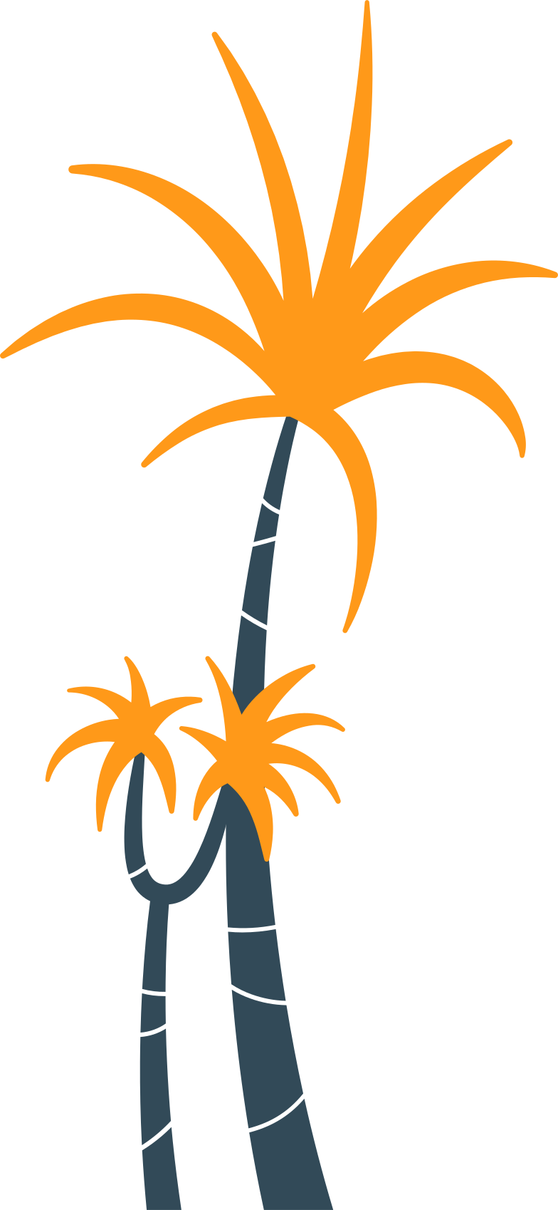 palm trees Clipart illustration in PNG, SVG