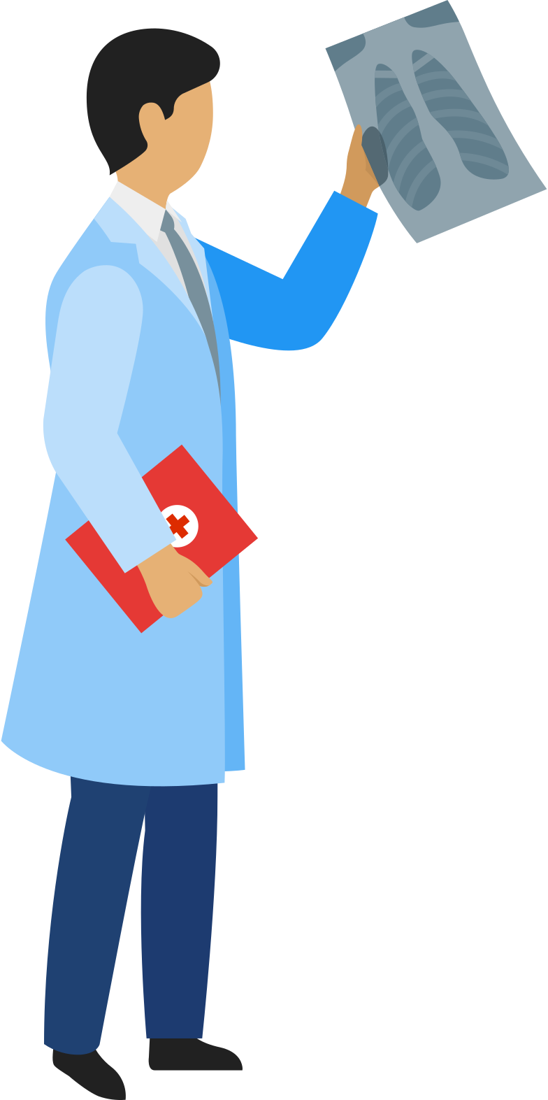 doctor with x-ray image and patient-card Clipart illustration in PNG, SVG