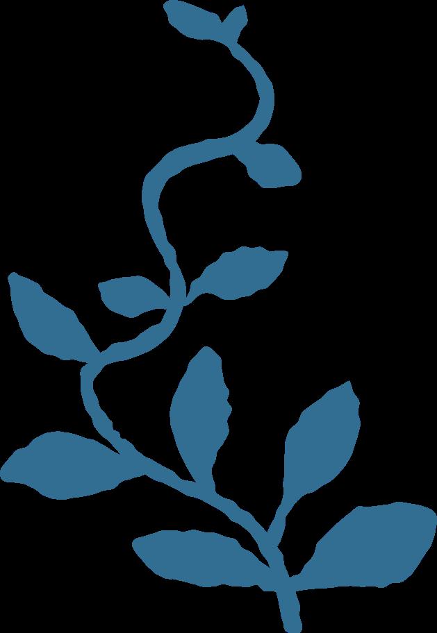 Ilustración de clipart de Rama con hojas decoracion en PNG, SVG