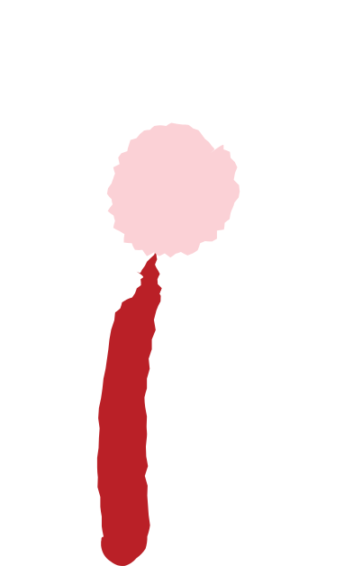 style flower images in PNG and SVG   Icons8 Illustrations