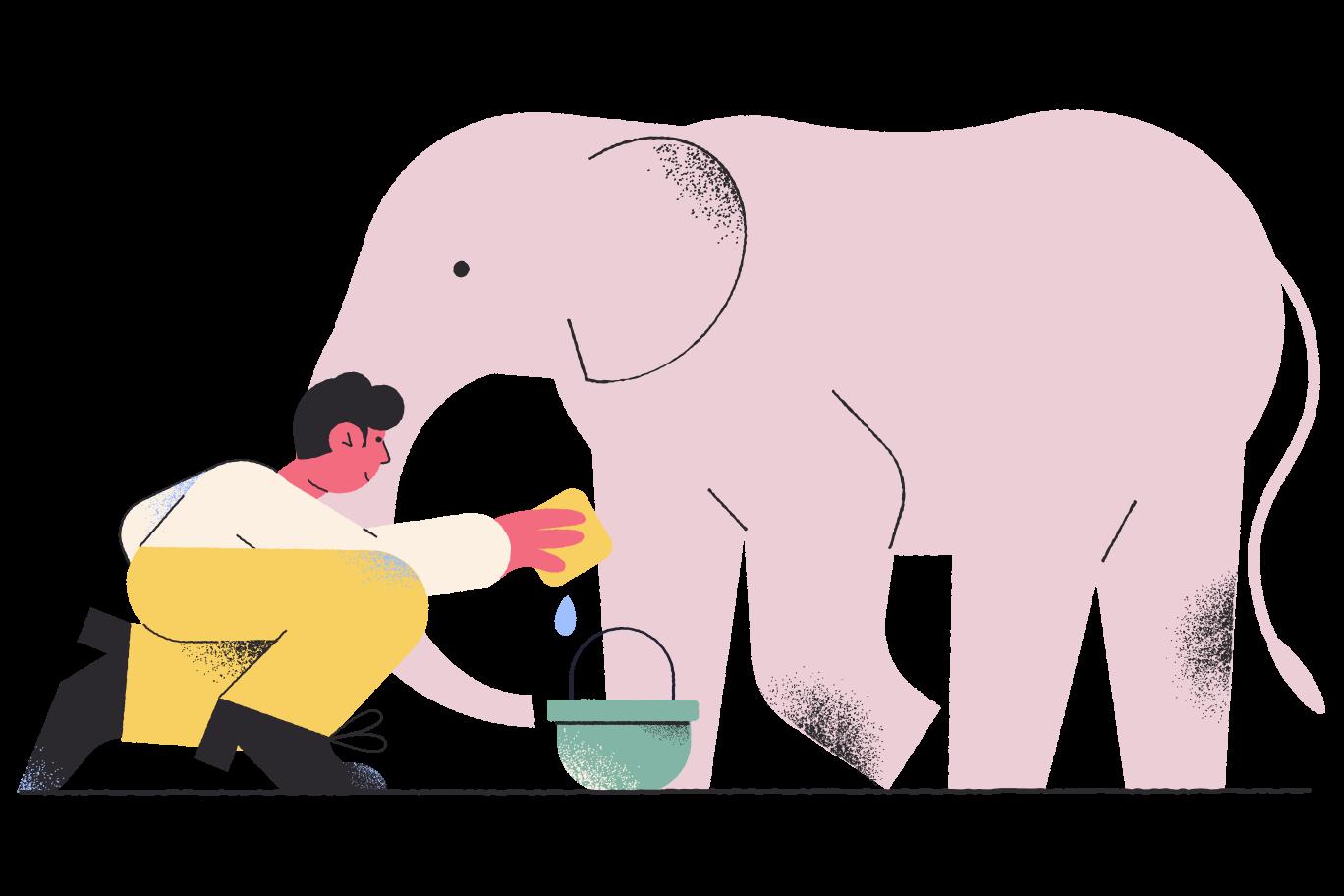 Wildlife care Clipart illustration in PNG, SVG