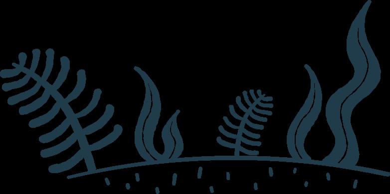 forest Clipart illustration in PNG, SVG