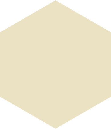 style hexagon beige images in PNG and SVG | Icons8 Illustrations