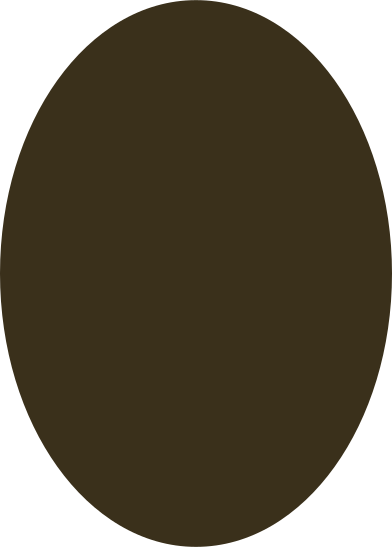 style ellipse brown images in PNG and SVG | Icons8 Illustrations