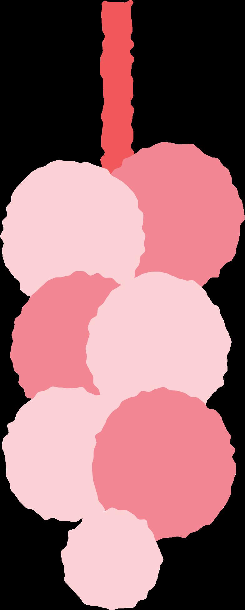 garlic Clipart illustration in PNG, SVG