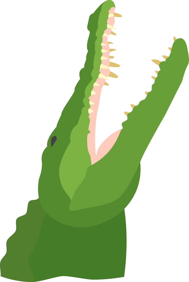 style alligator Vector images in PNG and SVG   Icons8 Illustrations