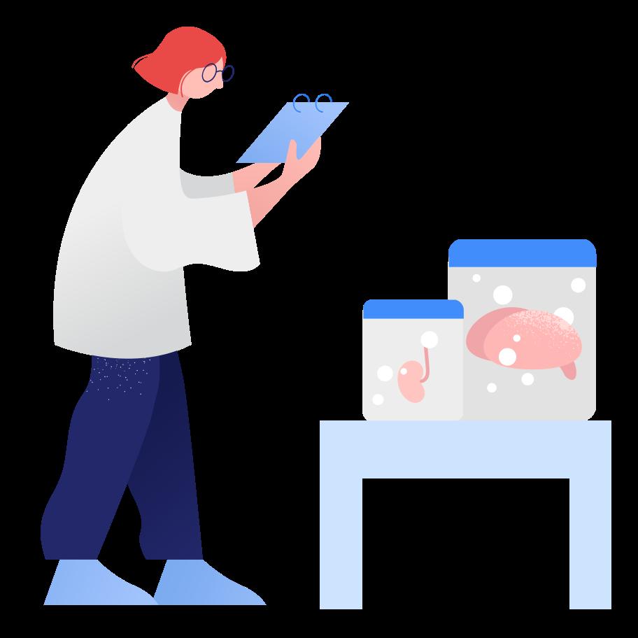 Lab-grown organs Clipart illustration in PNG, SVG