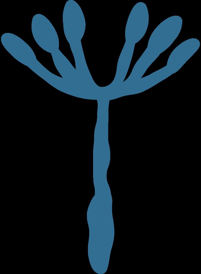 dandelion Clipart illustration in PNG, SVG
