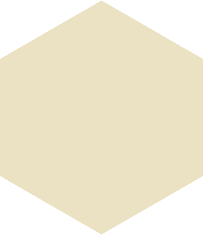 style hexagon beige Vector images in PNG and SVG | Icons8 Illustrations