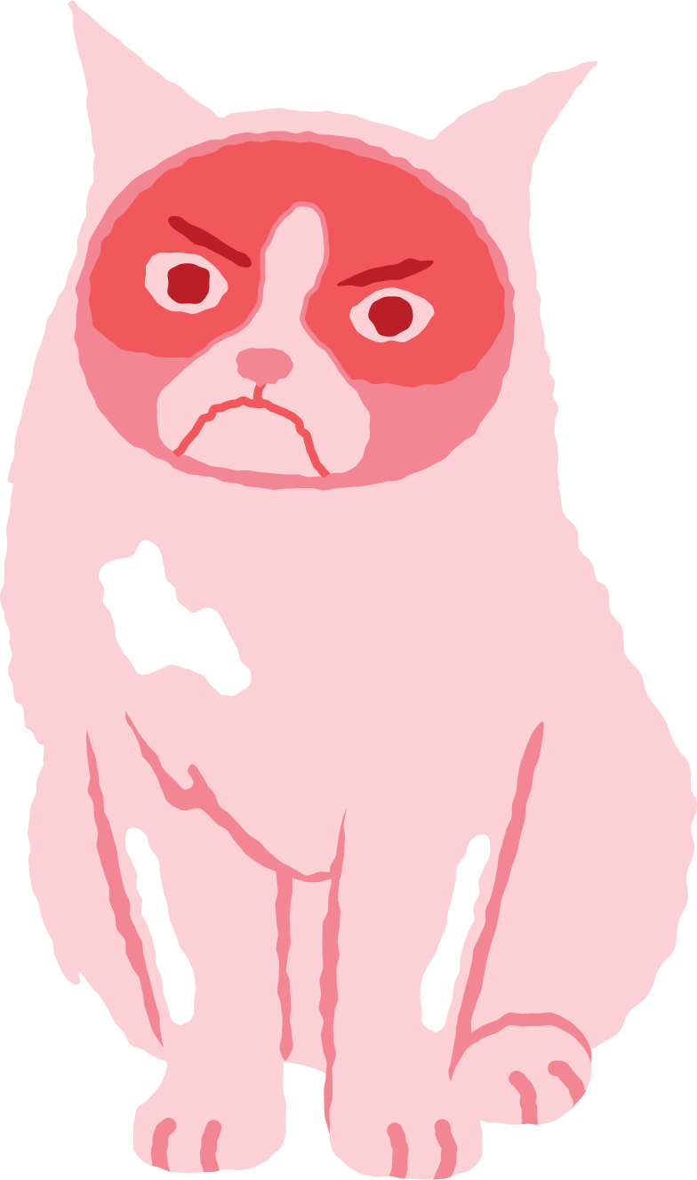 grumpy cat Clipart illustration in PNG, SVG