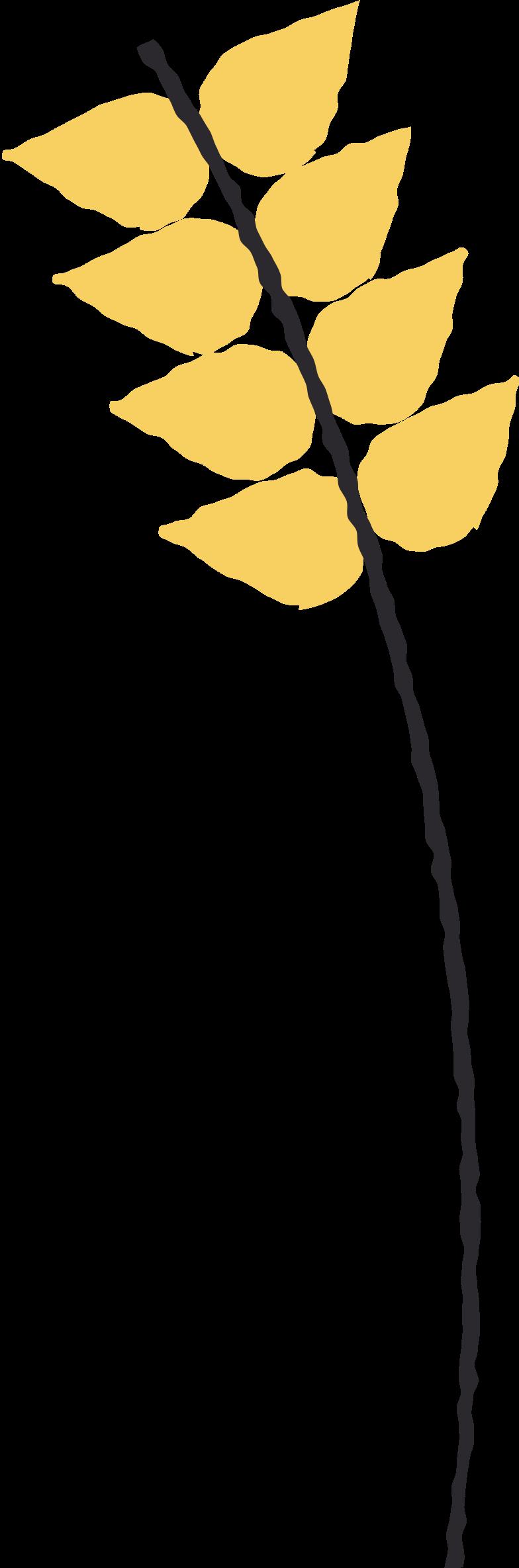 Ilustración de clipart de wheat en PNG, SVG
