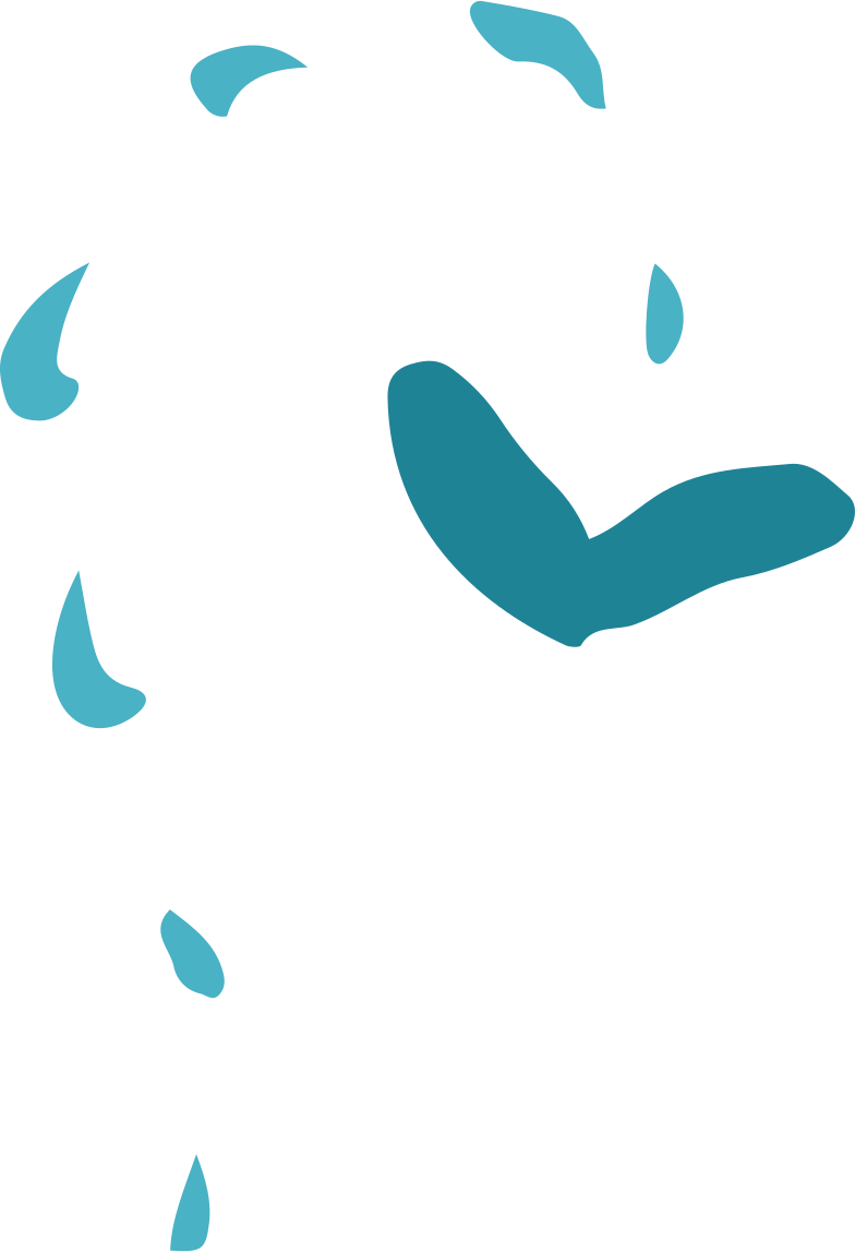 fly Clipart illustration in PNG, SVG
