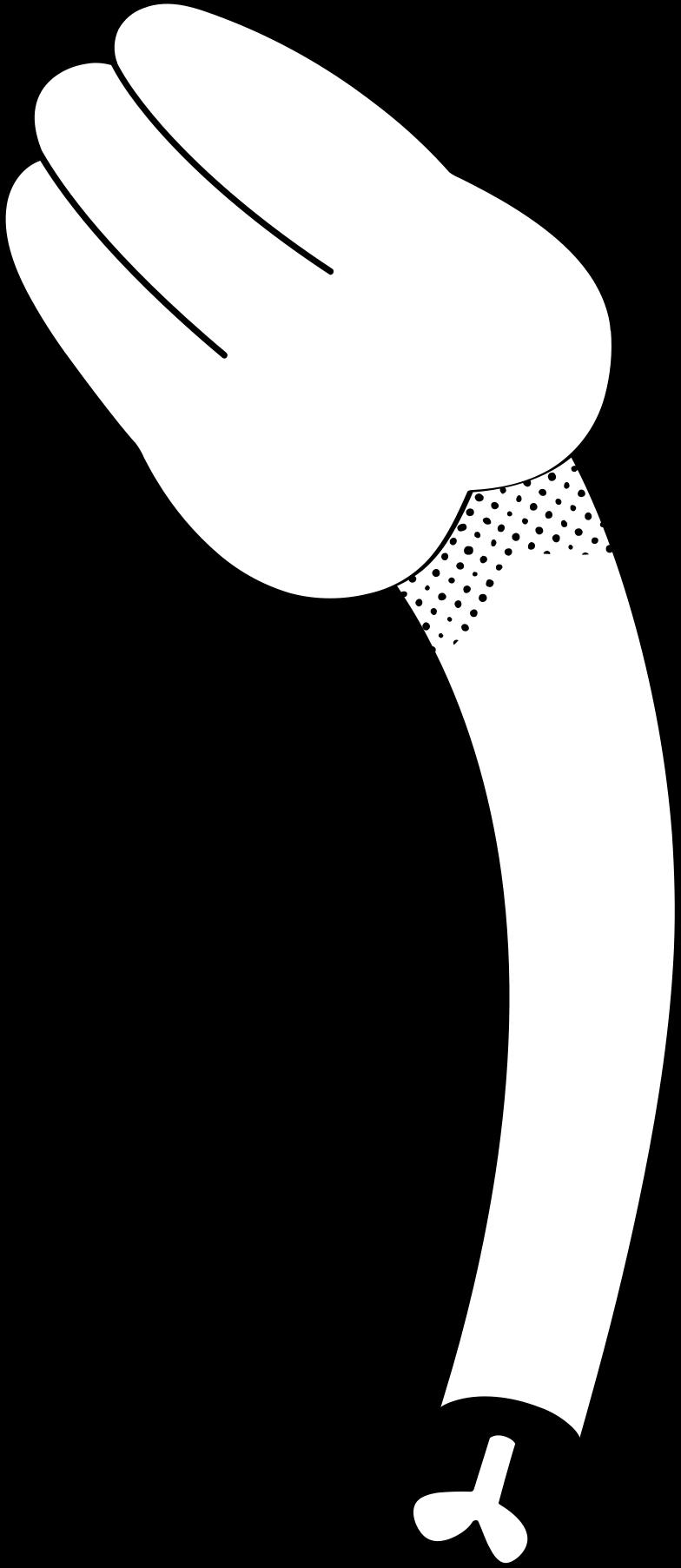 Ilustración de clipart de mano en PNG, SVG