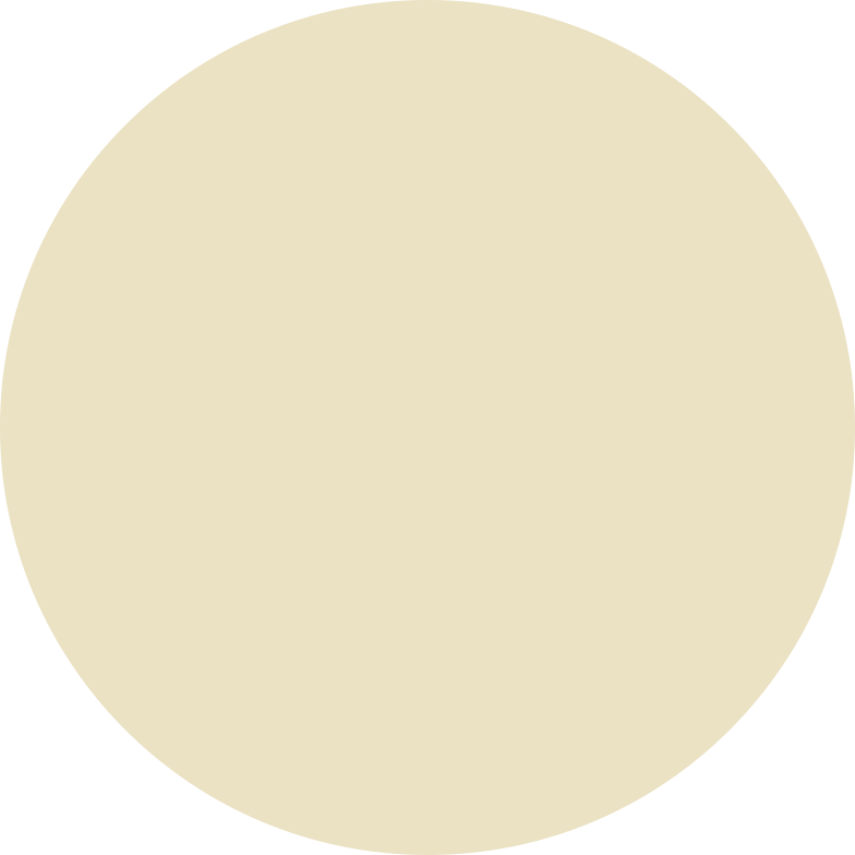 style circle beige Vector images in PNG and SVG | Icons8 Illustrations