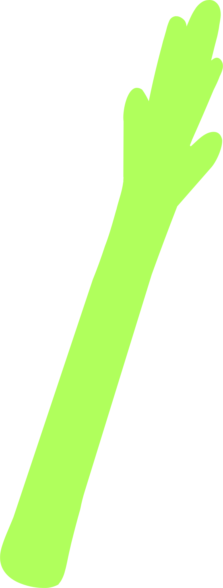 PNGとSVGの  スタイルの アスパラガス ベクターイメージ | Icons8 イラスト