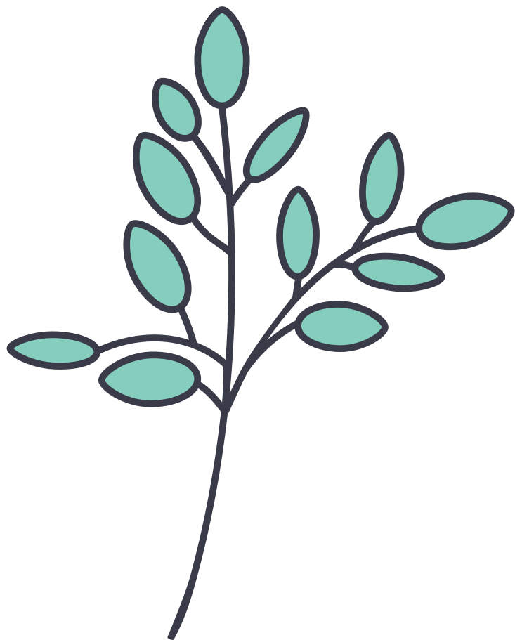 style olive branch Vector images in PNG and SVG   Icons8 Illustrations