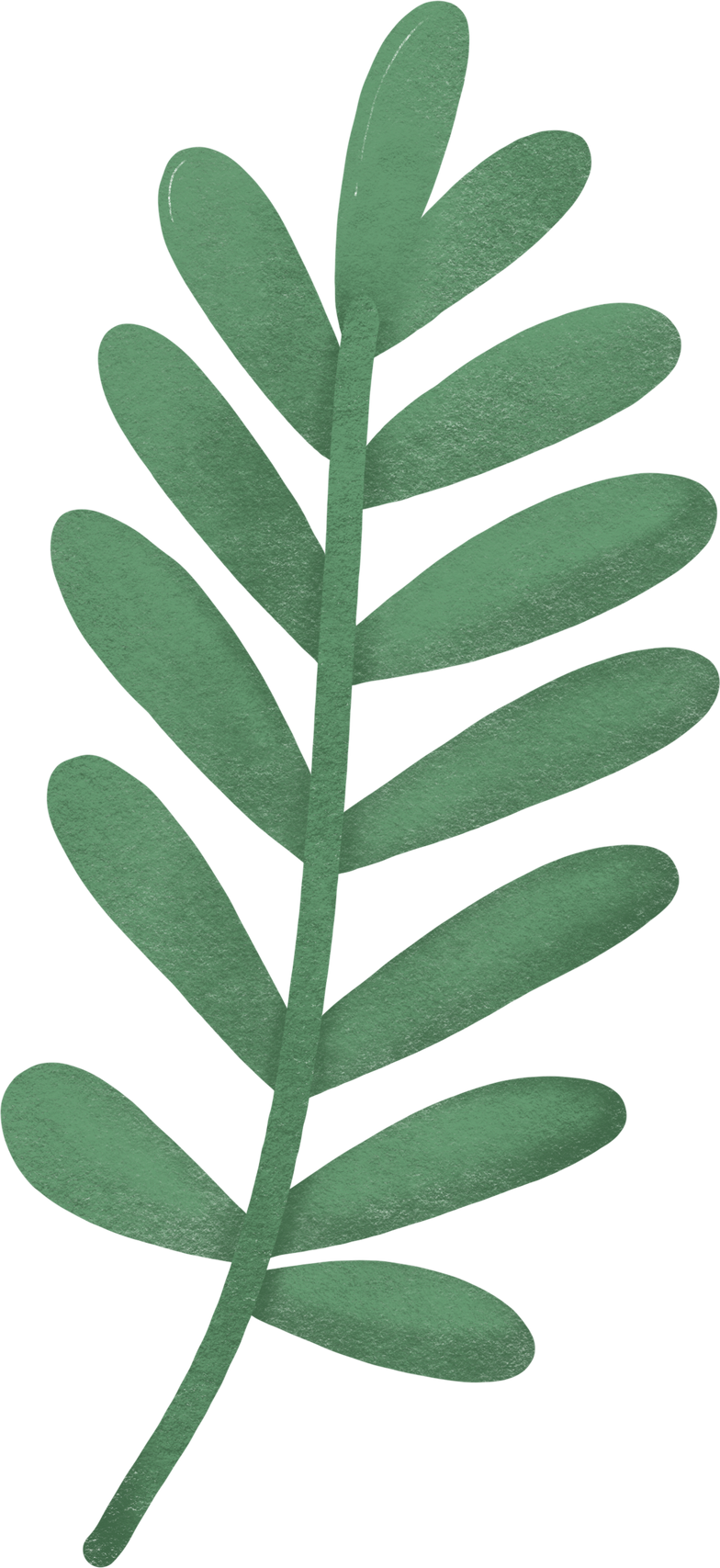 style palm leaf Vector images in PNG and SVG | Icons8 Illustrations