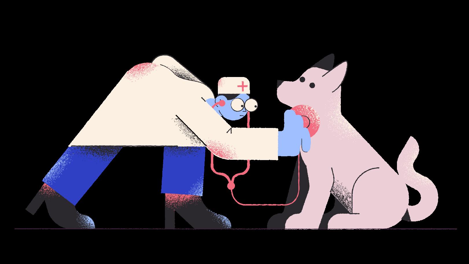 Vet Clipart illustration in PNG, SVG