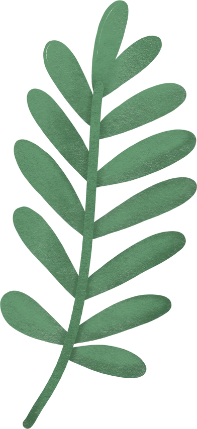 style palm leaf images in PNG and SVG | Icons8 Illustrations