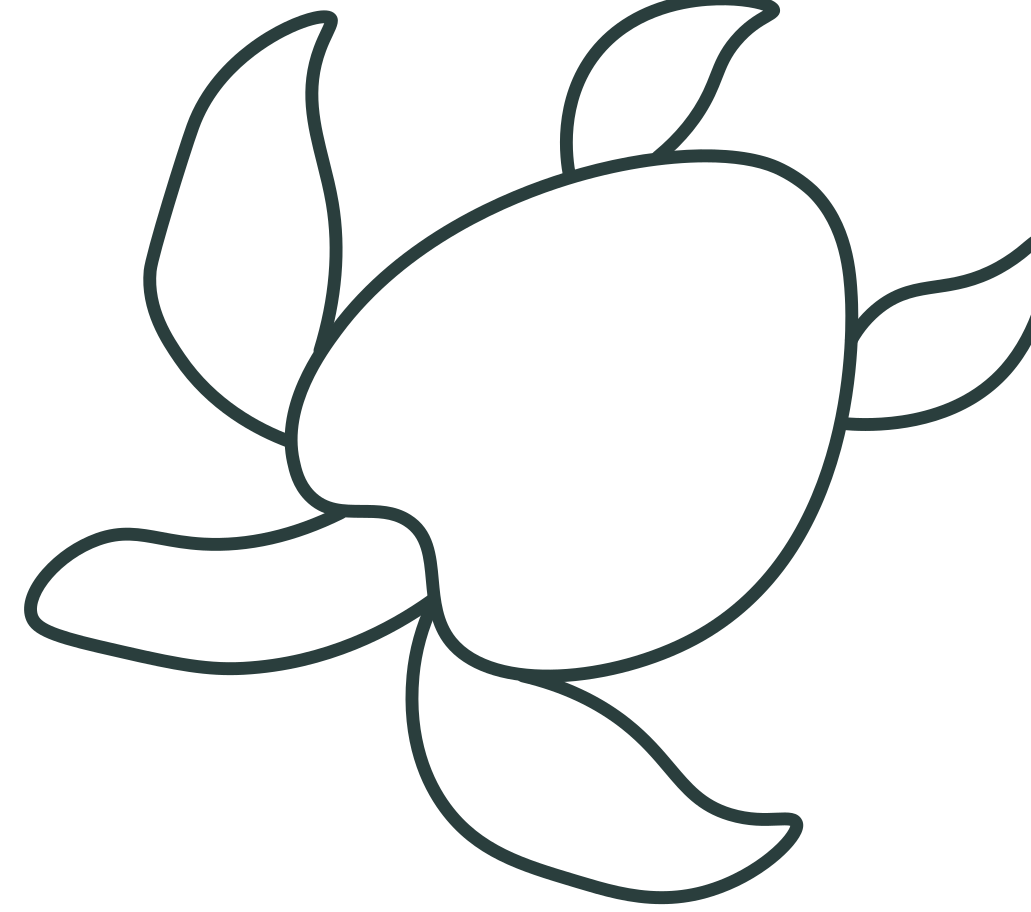 style turtle Vector images in PNG and SVG | Icons8 Illustrations