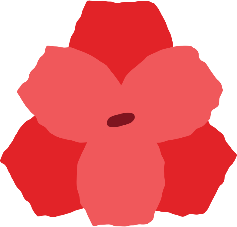 style hippeastrum flower Vector images in PNG and SVG | Icons8 Illustrations