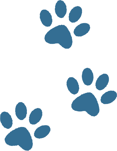 style paw print images in PNG and SVG   Icons8 Illustrations