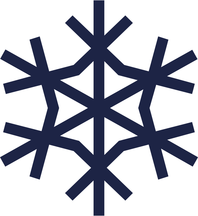 style snowflake 2 line Vector images in PNG and SVG | Icons8 Illustrations