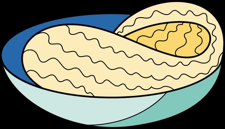noodles Clipart illustration in PNG, SVG