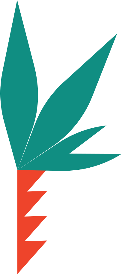 palm Clipart illustration in PNG, SVG