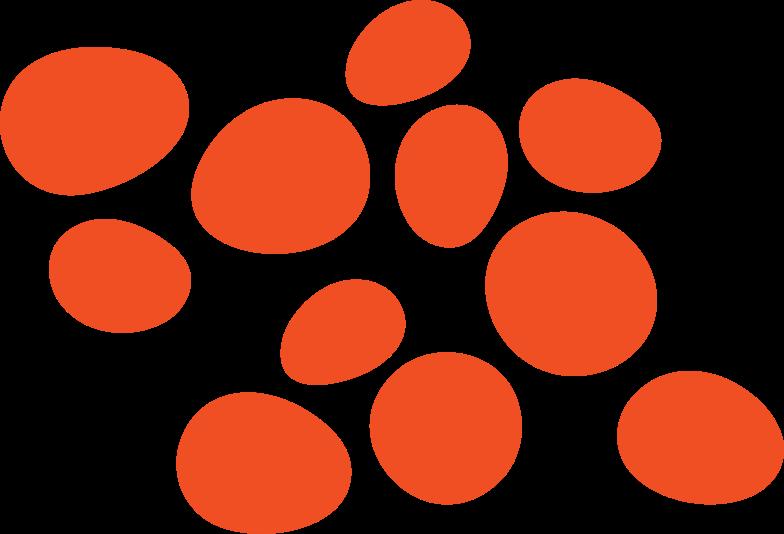 oranges Clipart illustration in PNG, SVG