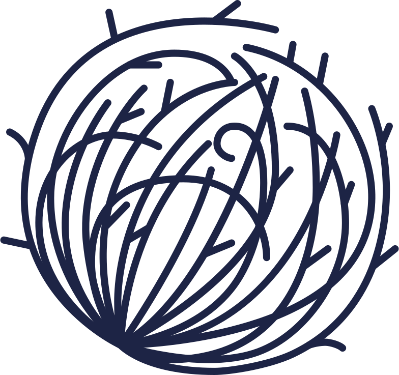 no comments  desert plant 1 line Clipart illustration in PNG, SVG