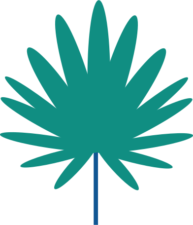 style palm tree branch images in PNG and SVG | Icons8 Illustrations