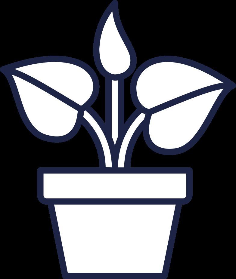 plant line Clipart illustration in PNG, SVG