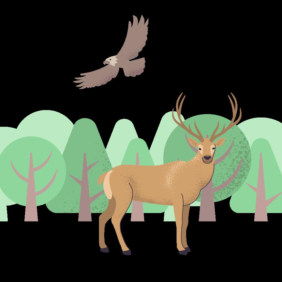 Forest life Clipart illustration in PNG, SVG